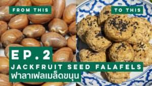 Jackfruit Seed Falafels