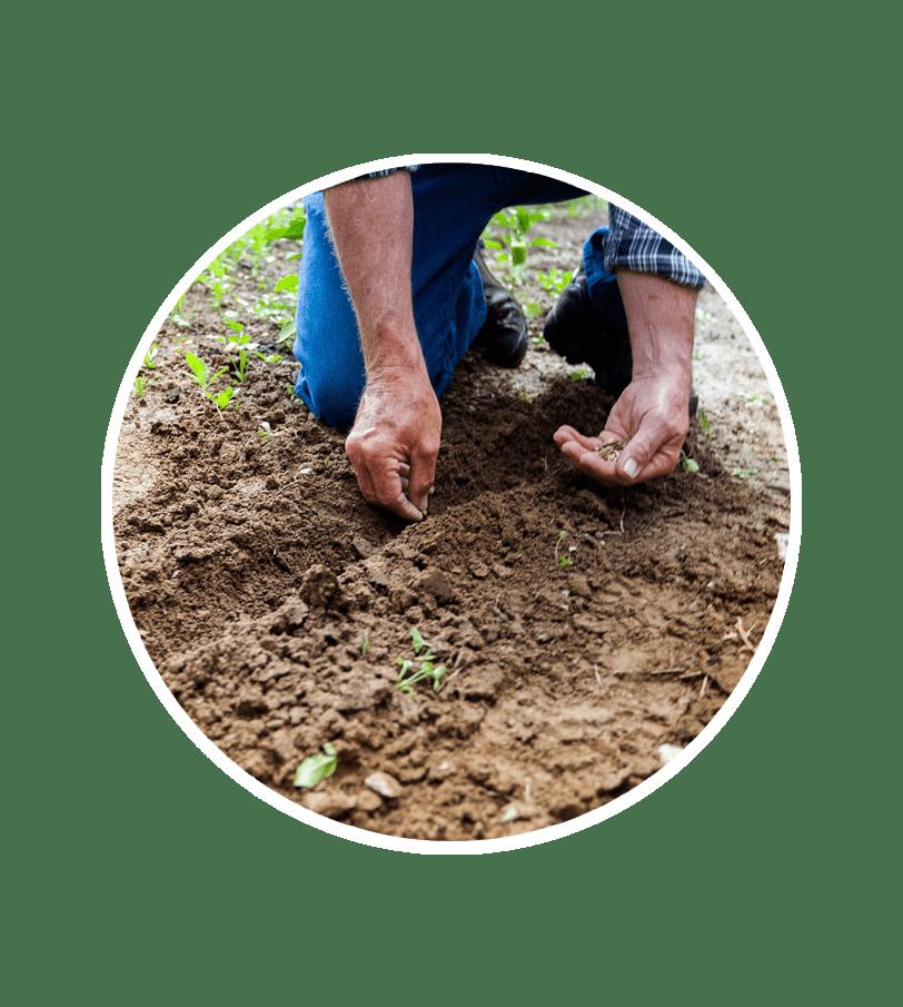 Growing Soil Farmer