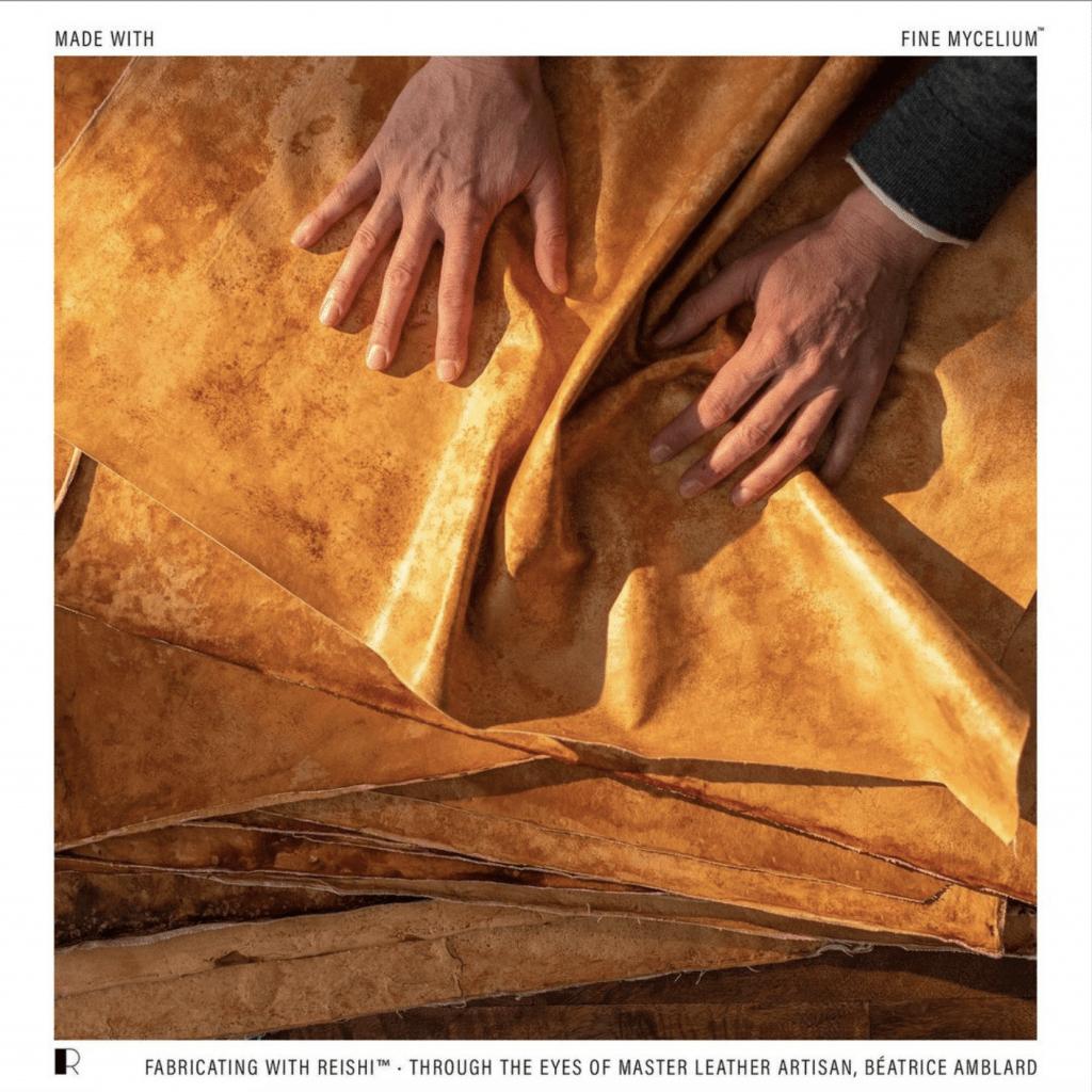 Hermes mushroom leather